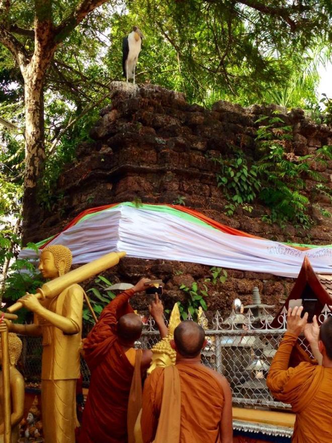 Oiseau sacré du temple central, Vientiane, Laos   hintmytrip.com - Blog voyage tour du monde sac-a-dos