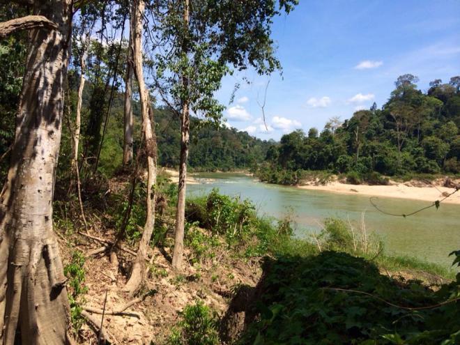 Parc National Taman Negara, Malaisie | hintmytrip.com Blog tour du monde sac-a-dos